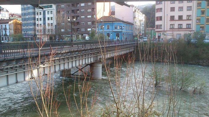 Paseo Fluvial por el río Nalón