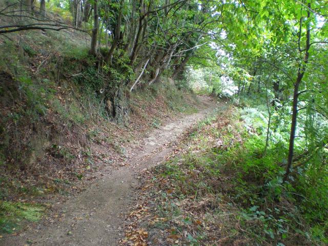 Vuelta a Langreo (PR. AS-44)
