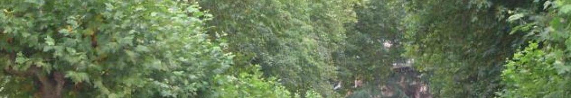 Parque Dorado Sama de Langreo