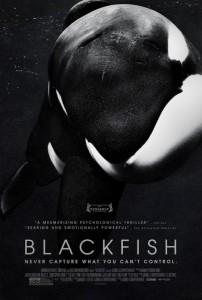 Cine Blackfish Felgueroso Sama de Langreo