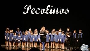 Encuentro de coros infantiles y juveniles ciudad de Langreo Coro Pecolinos