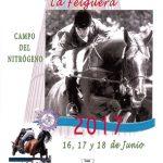 XXXI Concurso Hípico Nacional de La Felguera