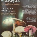 XVII Exposición Micológica Valle del Nalón
