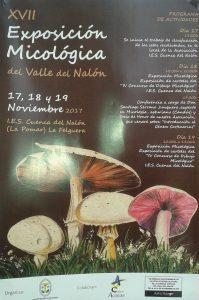 XVII Exposición Micológica Valle del Nalón @ I.E.S. Cuenca del Nalón   Langreo   Principado de Asturias   España