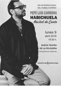 """Día internacional del pueblo gitano: Recital de cante de """"Habichuela"""" @ Nuevo Teatro de La Felguera   Langreo   Principado de Asturias   España"""