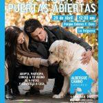 Jornada puertas abiertas albergue canino de Langreo