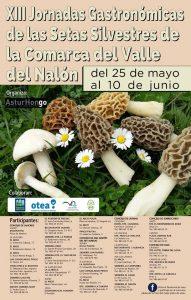 XIII Jornadas Gastronómicas de las setas silvestres de la comarca del valle del Nalón @ Langreo | Langreo | Principado de Asturias | España
