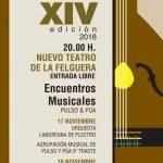 Festival de Cuerda Pulsada