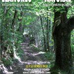 """Certamen """"Llangréu Natural"""" 2019"""