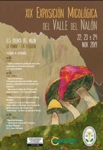 XIX Exposición Micológica del Valle del Nalón @ I.E.S. Cuenca del Nalón